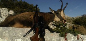 Chamois-and-Rifle-SLIDER