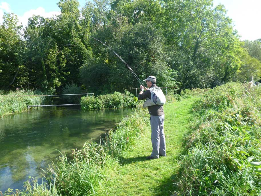 River-Test-chalkstream-grayling-Luis